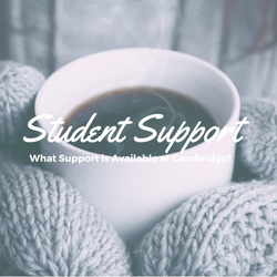 250x250 student support
