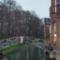 A rainbow flag hangs over the river Cam