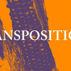 Transpositions Performance